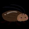 オフィスの観葉植物にいるゴキブリ対策、退治、駆除 (ゴキちゃんストップがおすすめ!)