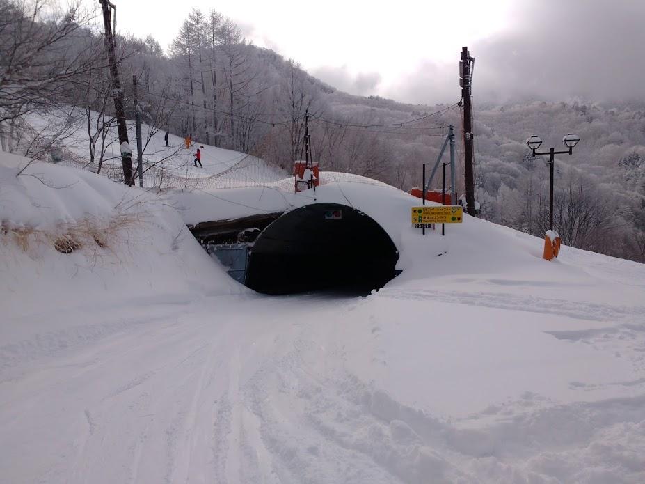ライブ スキー 志賀 高原 カメラ 場